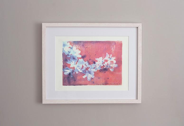 Miyama Kirishima Art Prints 2017